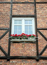 picture of tenement  - Window with flowers in old tenement house in Gdansk Poland - JPG