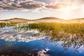 pic of reflection  - Sunset on the beautiful lake reeds and reflections on the shore - JPG