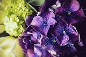 foto of hydrangea  - Big bouquet of fresh flowers - JPG