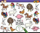 picture of brain teaser  - Cartoon Illustration of Finding the Same Picture Educational Game for Preschool Children with Farm Animals - JPG