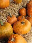 Pumpkinsb