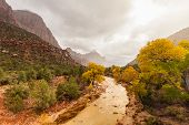 Постер, плакат: Virgin River and Watchman in Fall