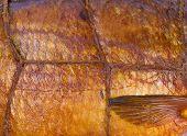 Smoked Fish Background