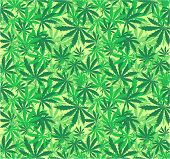 image of marijuana leaf  - cannabis seamless pattern in vector format very easy to edit - JPG