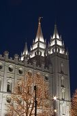Salt Lake Temple East Spire From South At Night