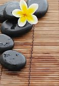 Spa still life with zen stone and frangipani flower,Closeup.