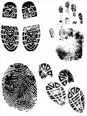 Shoeprints Handprints And Fingerprints