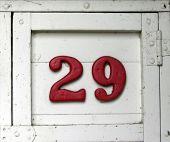 Hand Painted Number Twenty-Nine