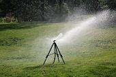 Lawn Sprinkler. Outdoor Lawn Sprinkler watering green grass. Water being sprayed by automatic sprink poster