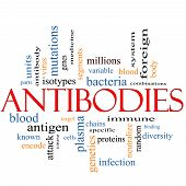 Antibodies Word Cloud Concept