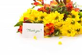 image of thank you card  - bouquet of gerberas and chrysanthemums on white background - JPG