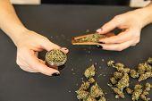 Woman Rolling A Marijuana Joint. Woman Preparing And Rolling Marijuana Cannabis Joint. Close Up Of M poster