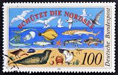 A stamp  shows the flora and fauna of the North Sea