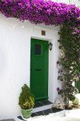 Green Door With Bougainville