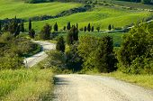 Gravel Road, Italian Countryside