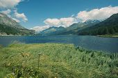 picture of engadine  - Alpine landscape in the valley of Engadin - JPG
