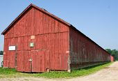 pic of tobacco barn  - Connecticut tobacco shed used for drying tobacco leaves used for cigar wrappers - JPG