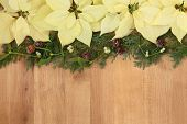Poinsettia flower arrangement with mistletoe, cedar leaf sprigs and pine cones over golden oak background.