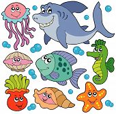 Aquatic Animals Collection