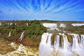 Roaring falls in South America - Iguazu. Foamy streams fall between the green jungle. The magnificen