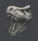 image of tyrannosaurus  - Tyrannosaurus Dinosaur  - JPG