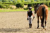 foto of breed horse  - Horse and lovely equestrian girl - JPG