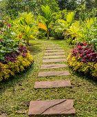 Garden Pathway