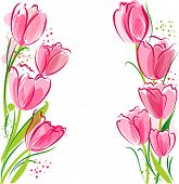 Tulips Backgound