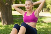 View of a healthy and beautiful young woman doing stomach crunches in the park