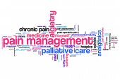 pic of hospice  - Pain management and palliative care issues and concepts word cloud illustration - JPG