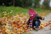 Little Baby In An Autumn Park