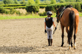 picture of horse girl  - Horse and lovely equestrian girl - JPG