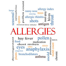 image of dust mite  - Allergies Word Cloud Concept with great terms such as food pollen mold and more - JPG