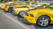 Mustangs, Mustang Alley, Woodward Dream Cruise