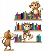 Illustration of monkeys with books