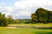 Autumn In Golf Course