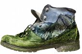 Mossy Hiking Boot Isolated