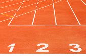 picture of olympiad  - The Running track and track number  - JPG