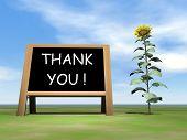 Sunflower blackboard saying thank you - 3D render