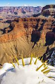 Grand Canyon In Winter, Usa.