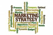 Market Strategy word cloud on white background