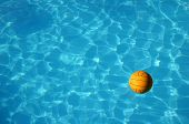 Waterpolo Ball In Pool (2)