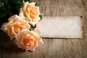 Delicate Cream Roses On Wooden Table