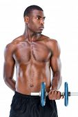 Serious fit shirtless young man lifting dumbbell over white background