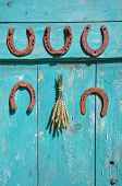 Five Antique Rusty Horseshoe And Wheat Ears Bunch On Wall