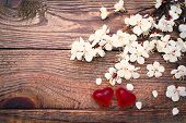Flowering branch with white delicate flowers on wooden surface.