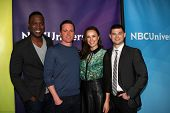 LOS ANGELES - JAN 15:  Kevin Daniels, Kevin Bigley, Jessica McNamee, Michael Mosley at the NBCUniversal Cable TCA Winter 2015 at a The Langham Huntington Hotel on January 15, 2015 in Pasadena, CA