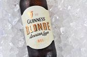 Guinness Blonde On Ice Closeup