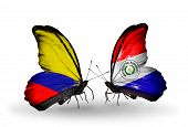 Two Butterflies With Flags On Wings As Symbol Of Relations Columbia And Paraguay