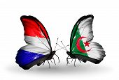 Two Butterflies With Flags On Wings As Symbol Of Relations Holland And Algeria